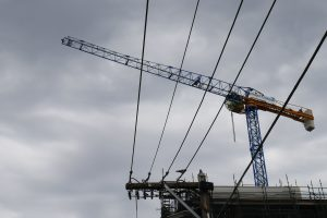 Raimondi cranes with powerlines