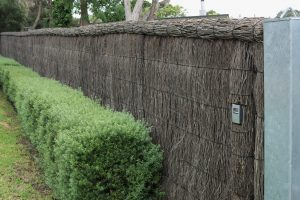 Brush fencing, brush fence with hedge in front